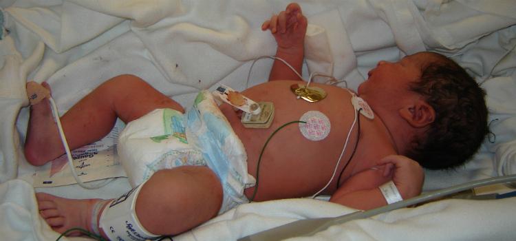 recém-nascido e exames básicos