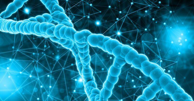 tipos de células-tronco
